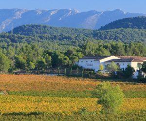 Château Paradis Weingut