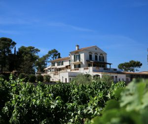 Weingut Domaine de la Navicelle