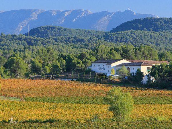 Château Paradis Probierpaket