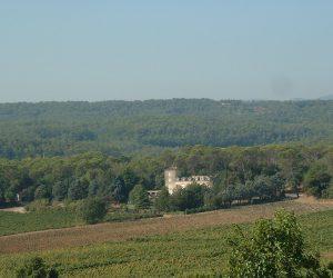 Chateau et vignoble